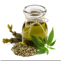 Hemp Seed Oil The NEW Super Food for your Pets